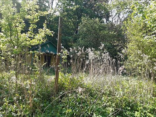Prodej pozemků - Habeš (zahrada1)